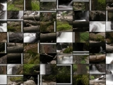 Пазлы: Forest Waterfall