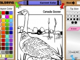 Goose Coloring