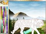 Раскраски: Tiger Blues