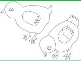 Раскраски: Милые цыплята