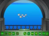 Прекрасный аквариум