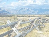 Пазлы: Fence in Field