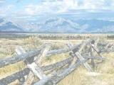 Пазлы: Fence in Field