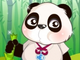Meet And Dress A Friendly Panda
