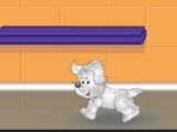 Go Puppy Go