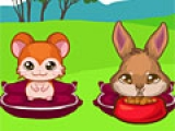Игра Pretty Pet Care