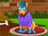 My Funny Bull Terrier