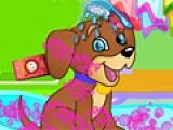 flash игра Dora Pets Care