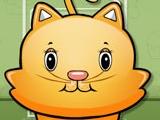 Прожорливый котенок