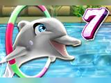 Игра Шоу дельфина 7