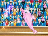 Шоу дельфина 5
