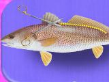 Готовим красную рыбу